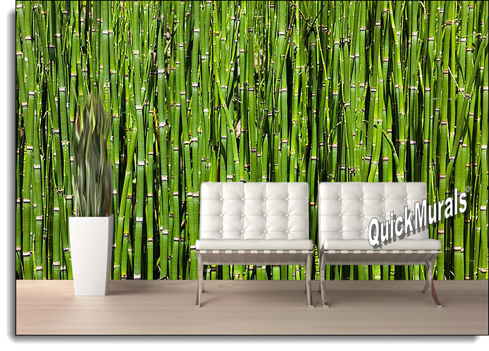 TheWallMuralStorecom Full Size Large Wall Murals Bamboo