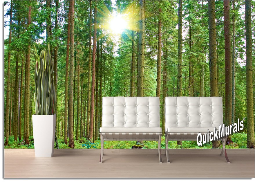 TheWallMuralStorecom Full Size Large Wall Murals Morning